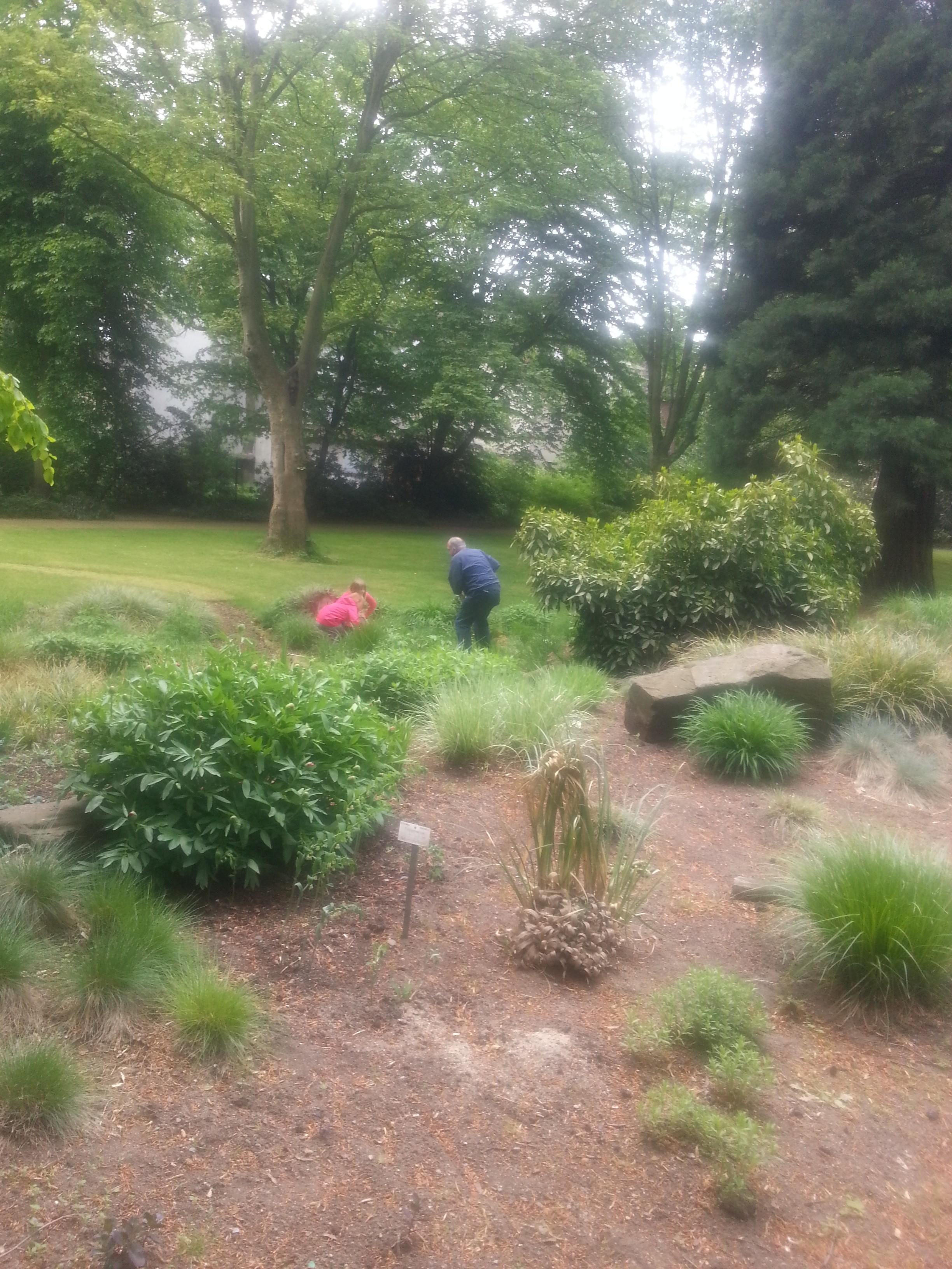 Spurensuche am 11. Mai im Botanischen Garten